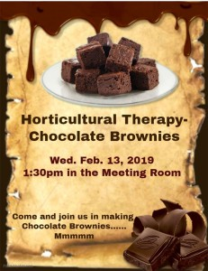 Horticultural Therapy - Chocolate Brownies @ MTG